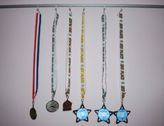 adjustable_medals_display_using_32124_track